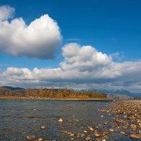 Река Зун-Мурен :: Анатолий Иргл