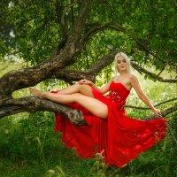 В красном :: Ирина Жулина