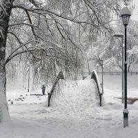 кормление птиц :: Moscow.Salnikov Сальников Сергей Георгиевич