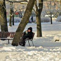 Почитать на морозце... :: Sergey Gordoff