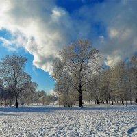 Дым над Парком... :: Sergey Gordoff