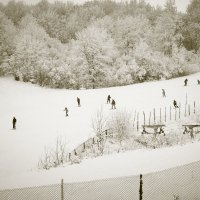 Лыжники :: Aнна Зарубина