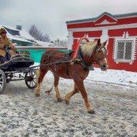 Прокати ,лошадка,меня с ветерком...да по морозцу! :: Лара ***