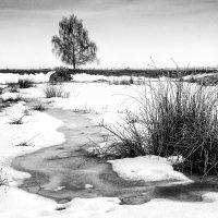 Зимний пейзаж... :: Сергей