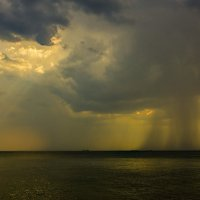 дождь :: олег