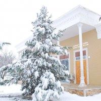 И в Узбекистане зима бывает...... :: Юрий Владимирович