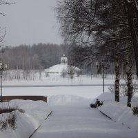 Рыбинск зимой. :: нина