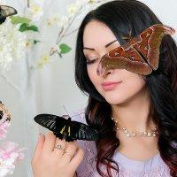 фс с живыми бабочками :: лина сергеева