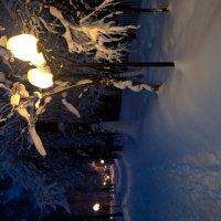 вечер зима :: Елена Натфулина
