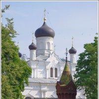 Егорьевск. Свято-Троицкий Мариинский монастырь. :: Николай Панов