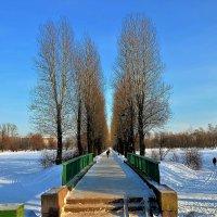 Мостик между прудами... :: Sergey Gordoff