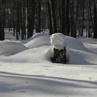 Снег :: Ольга Беляева