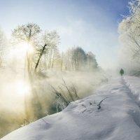 Зимний туман :: Елизавета Митрофанова