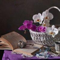 Этюд с орхидеями :: lady-viola2014 -
