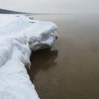 Берег Финского залива :: veera (veerra)