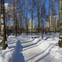 Потому что скоро март :: Андрей Лукьянов