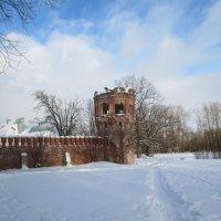 зима в Фёдоровской Городке :: Елена