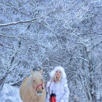 Зимняя прогулка :: Виктория Дубровская