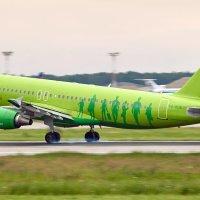 Посадка Airbus A320 в аэропорту Домодедово :: Сергей Коньков