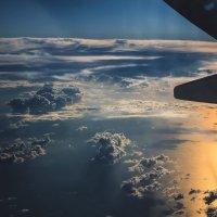 Красота полёта :: Сергей Гончаров