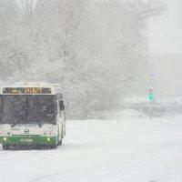 Один в граде автобус :: Василий Ворона