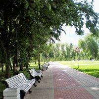 Лето. :: венера чуйкова