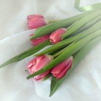 С первым днем весны! :: SaGa