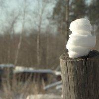 снеговики на страже.. :: Михаил Жуковский