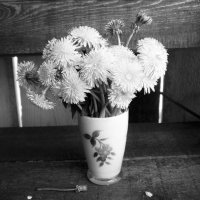 Май. :: венера чуйкова