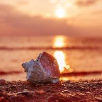 Море... :: Александр Маркелов
