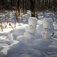 Чудеса в лесу :: Валентина Ломакина