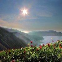 чудная весна Киммерии :: viton