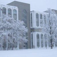 Зимняя краса :: Дмитрий Никитин