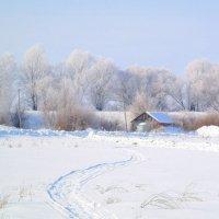 Зимняя сказка :: Татьяна Носова