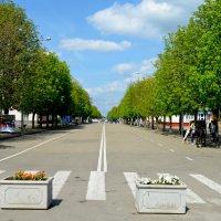 Майкоп центральная улица :: Геннадий Титов