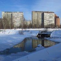 Правильный март :: Андрей Лукьянов