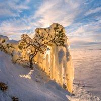 Под тяжестью льда, но не сломлен, дождётся весны :: Фёдор. Лашков
