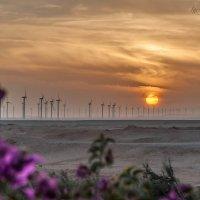 Восточный закат в Египте :: 30e30 (Игорь) Васильков