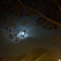 Луна  в  тучах :: Инна Крыжановская
