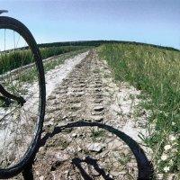 Езда на велосипеде круглое лето. :: Игорь Олегович Кравченко
