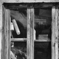 .. в окне.. :: Аленка Алимова