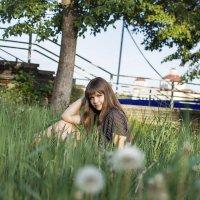 Летний день :: Ксения ПЕН