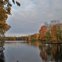 В осеннем парке... #5 :: Андрей Вестмит