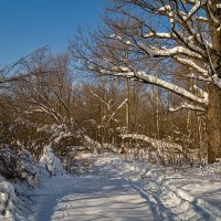 Последние денёчки этой зимы :: Андрей Дворников