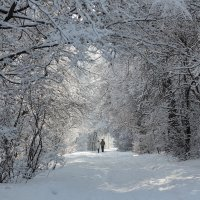 зимняя прогулка :: Серик Б.