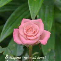 *-* :: Andrey65