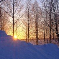 всё таки солнце проснулось ! :: Георгий