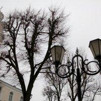 В фонаре поселился человечек :: Галина Бобкина