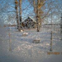 Вид из зимнего окна :: Светлана Рябова-Шатунова