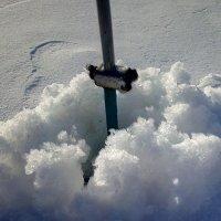 Мартовский снег :: Александр Алексеев